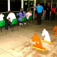 donkeys-559px